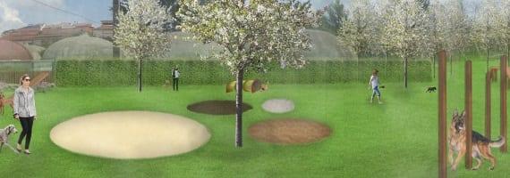 Parque para cães abrirá já no próximo verão em Viseu 2