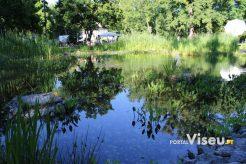 Viseu Sabe Bem   Imagens   Parque Aquilino Ribeiro 21