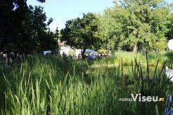 Viseu Sabe Bem   Imagens   Parque Aquilino Ribeiro 27