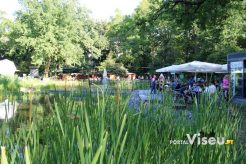Viseu Sabe Bem   Imagens   Parque Aquilino Ribeiro 28