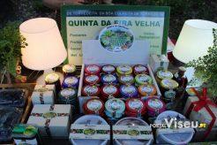 Viseu Sabe Bem   Imagens   Parque Aquilino Ribeiro 30