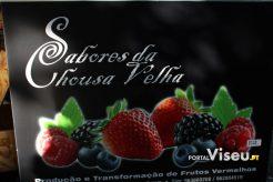 Viseu Sabe Bem   Imagens   Parque Aquilino Ribeiro 34