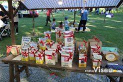 Viseu Sabe Bem   Imagens   Parque Aquilino Ribeiro 48