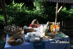 Viseu Sabe Bem   Imagens   Parque Aquilino Ribeiro 61