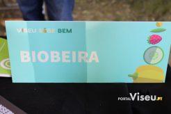 Viseu Sabe Bem   Imagens   Parque Aquilino Ribeiro 64