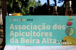 Viseu Sabe Bem   Imagens   Parque Aquilino Ribeiro 67
