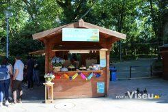 Viseu Sabe Bem   Imagens   Parque Aquilino Ribeiro 9