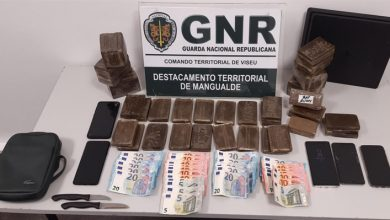 Photo of 11 mil doses de haxixe apreendidos em Viseu e Penalva do Castelo