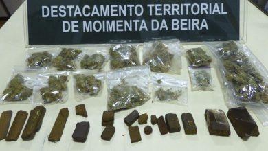 Photo of Moimenta da Beira | 13 detidos por tráfico de estupefacientes